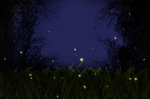 digital image of fireflies glowing at night
